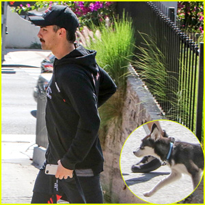 Joe Jonas Leads His Cute Pup Porky on a Stroll Around Town!