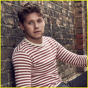 Niall Horan Reschedules His Mexico City Concert For Next Year