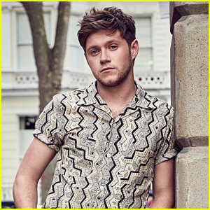 Niall Horan's Debut Album 'Flicker' Was Inspired By A Secret Relationship