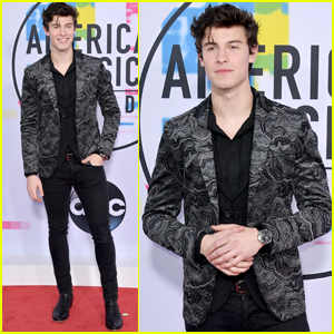 Shawn Mendes Looks So Handsome at American Music Awards 2017!