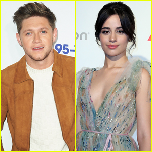Niall Horan Totally Knew About Camila Cabello's One Direction Fan Account