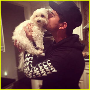 Taylor Lautner Pens Heartfelt Tribute After Death of Dog Roxy