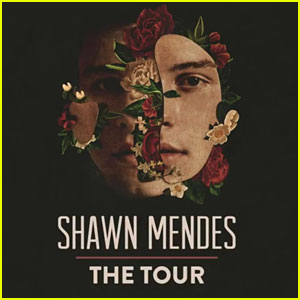 Shawn Mendes Announces 'Shawn Mendes: The Tour' - See the Dates!