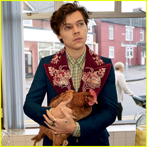 Harry Styles Gucci Campaign Photos Are Here Fashion