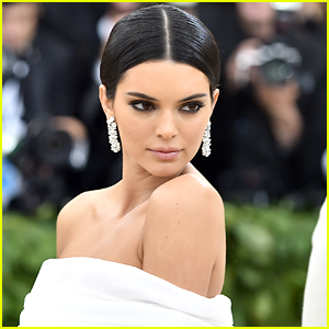 Cops Were Called After Kendall Jenner's Dog Reportedly Bit a Little Girl