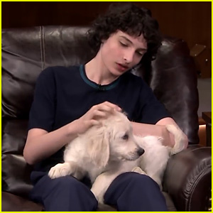 Finn Wolfhard Holds Adorable Puppies on 'Fallon' - Watch Now!