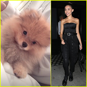 Madison Beer Introduces New Dog Zero To Fans