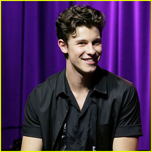 Shawn Mendes Has a (Not So) Secret 'Truth Is...' Journal!
