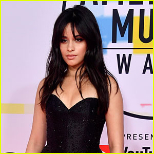 Camila Cabello Perfectly Slams Pregnancy Speculation: 'Leave Me and My Belly Alone'