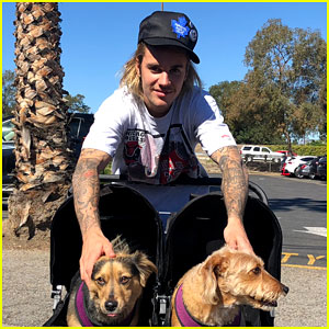 Justin Bieber Hangs Out With Pair of Cute Pups While Out in LA