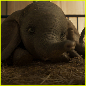 The Latest Trailer for 'Dumbo' is Too Cute - Watch Now!