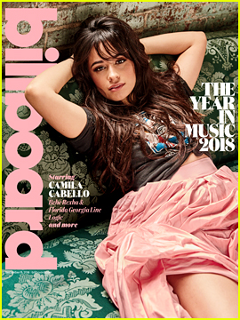 Camila Cabello Wants to Be an Artist, Not a Celebrity!
