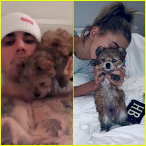 Justin & Wife Hailey Bieber Adopt New Puppy - Meet Oscar!