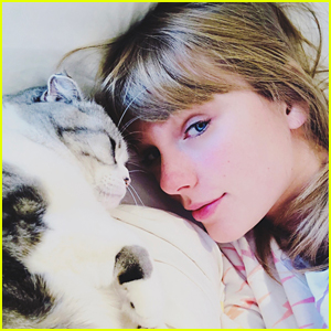 Taylor Swift Shares a Christmas Selfie with Her Cat Meredith!