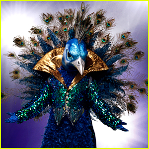 'The Masked Singer' Premieres Tonight - Get All The Details About The Show Here!