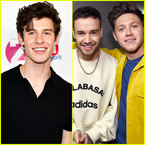 Liam Payne Wants To Be Part Of Niall Horan & Shawn Mendes's Planned Collaboration