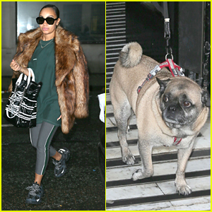 Leigh-Anne Pinnock Brings Pug Harvey To BBC Radio Stop With Little Mix