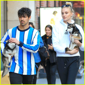 Joe Jonas & Sophie Turner Step Out With Their Sweet Puppies!