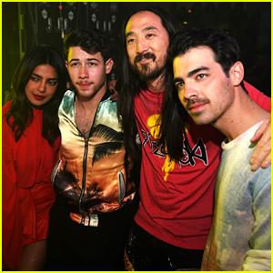Nick Jonas & Joe Jonas Toss Cake at Steve Aoki's Concert!
