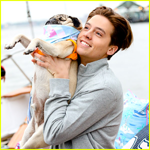 Cole Sprouse & Doug The Pug Are The Perfect Duo at Target's Vineyard Vines Launch Event