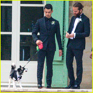 Joe Jonas & Sophie Turner's Dog Porky Basquiat Wore a Tux To Their Wedding!