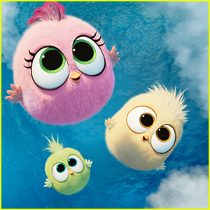 'Angry Birds 2' Debuts Adorable Hatchlings Clip - Watch Here!