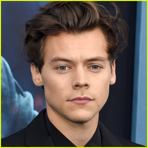 Harry Styles Could Play Prince Eric in 'The Little Mermaid'