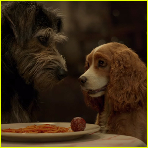 'Lady & the Tramp' Reboot Reveals First Trailer - Watch Now!