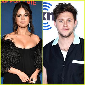 Selena Gomez & Niall Horan Have Dinner Together in LA