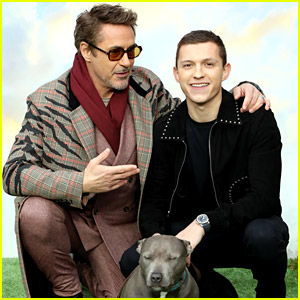 Tom Holland Brings His Dog Tessa to 'Dolittle' London Premiere!