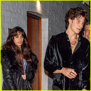 Camila Cabello & Shawn Mendes Celebrate Valentine's Day Together!