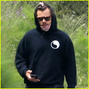 Harry Styles Practices Social-Distance While Out on Solo Walk