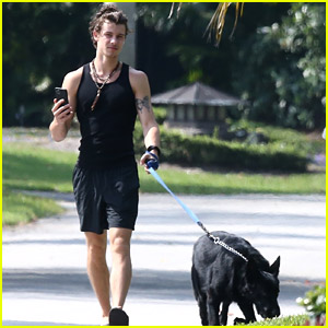 Shawn Mendes Goes for a Friday Morning Walk with Thunder
