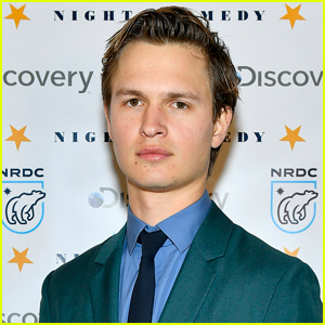 Ansel Elgort Releases a Statement About Recent Allegations Made Against Him