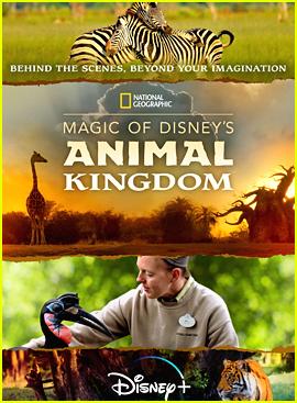 Disney+ To Take Fans Behind-The-Scenes of Walt Disney World's Animal Kingdom In New Docu-Series