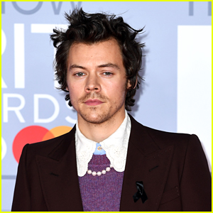 Fans Freak Out Over Harry Styles' Hair, Quickly Getting 'His Hair' Trending
