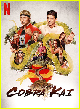 Netflix Announces 'Cobra Kai' Season 3 Will Premiere Earlier + New Stills!
