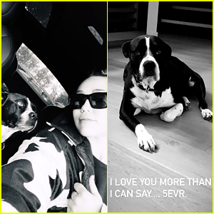 Miley Cyrus Reveals Her Beloved Dog Mary Jane Has Passed Away