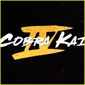 'Cobra Kai' Season 4 Teases Return of This 'Karate Kid 3' Character!