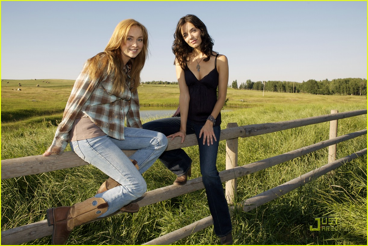 The gallery for --> Amber Marshall Horses