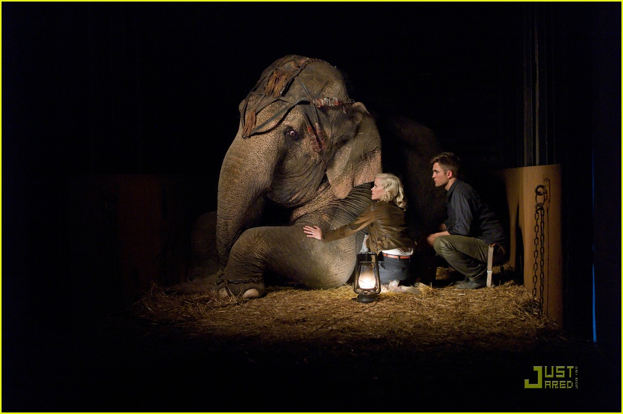 robert pattinson elephants pics 03
