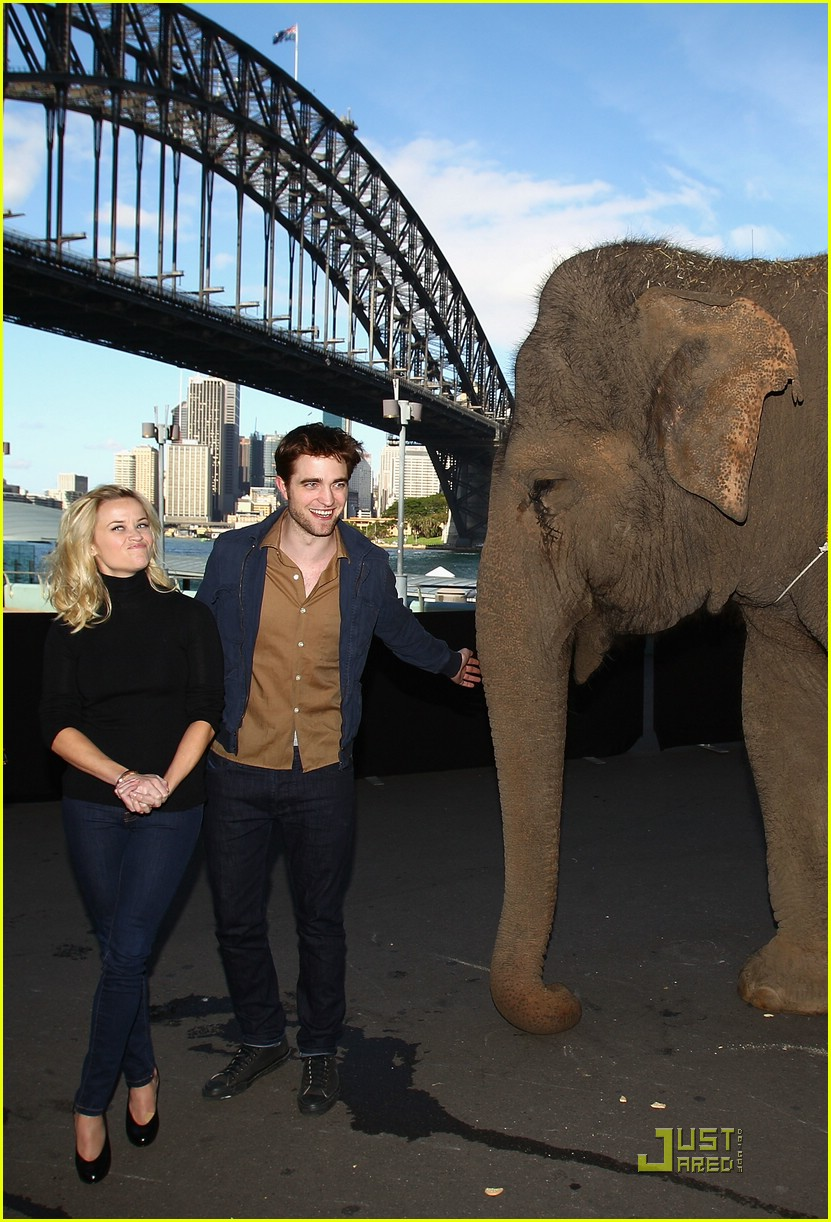 robert pattinson wfe sydney 02
