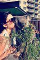 Jenner-koala kendall jenner koala kisses 03