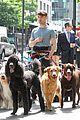 Dan-dog daniel radcliffe dog walker trainwreck nyc set 11