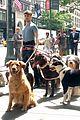 Dan-dog daniel radcliffe dog walker trainwreck nyc set 13