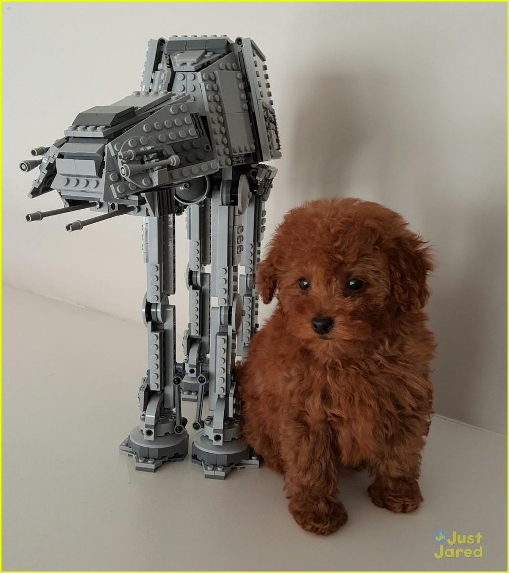 jacob tremblay names puppy rey star wars 04