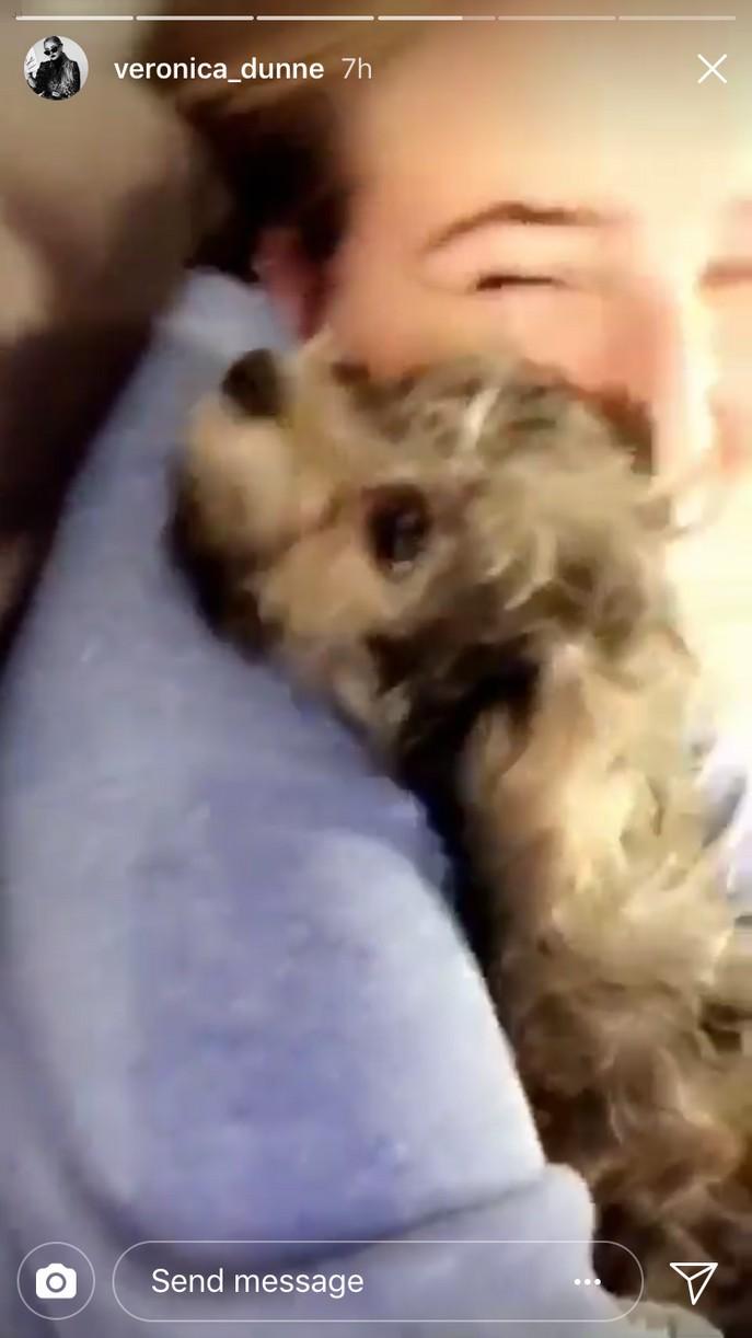 veronica dunne new puppy cuteness 03